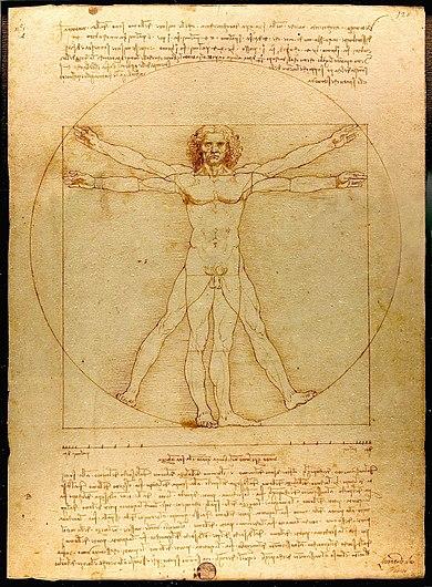 Notre corps: un outil précis